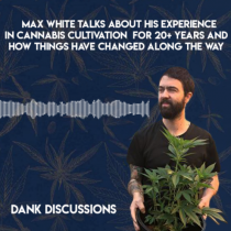 Cannabis Cultivation: Growing the Past 20 Years and Where it's Headed