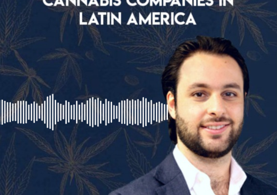 Investing In and Developing Cannabis Companies in Latin America | DANK Discussions Podcast hosted by Maynard Breslow | Presented by Calacann Media